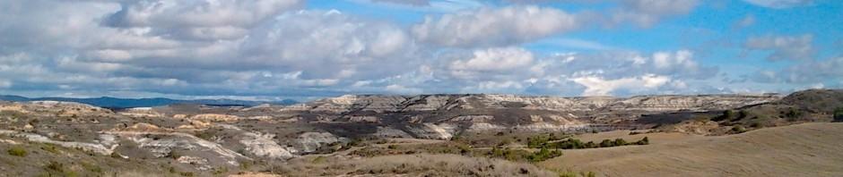 Valle de las Navas Serie Miocena. Melgosa Burgos. LI Ortega