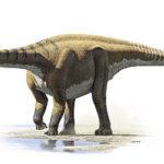 Demandasaurus-darwini-Raul-Martin