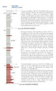 Columna geológicasintética del Mioceno inferior y medio en el Valle de la Navas. AGB 2014